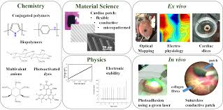 biomaterials from synthesis to applications of materials