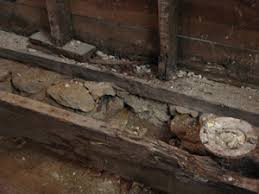 Floor Joist Repair Replace A Rotten Sill Plate Extreme How To