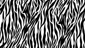 pattern formation zebra zebra desktop wallpapers wallpaper hd wallpapers pinterest