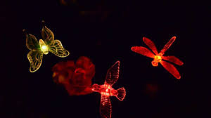 Dragonfly String Lights by A Set Of Hummingbird Butterfly U0026 Dragonfly Solar Lights Color