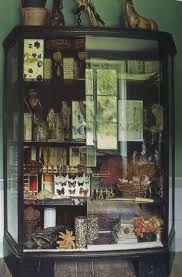 best 25 natural display cabinets ideas on pinterest natural