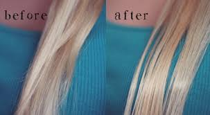shimmer lights shoo before and after 23 leave in treatment repair and renew review