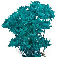 turquoise flowers pom tinted turquoise blue flowers