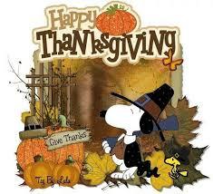 126 best turkey day images on turkey thanksgiving