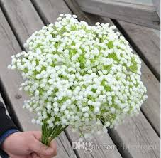 baby s breath flowers online cheap wholesale new baby s breath gypsophila paniculata