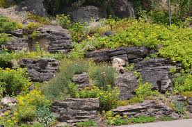 ministry of the fence more rock garden ideas for gardens and