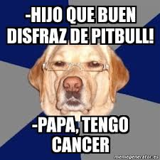 Memes Cancer - meme perro racista hijo que buen disfraz de pitbull papa tengo