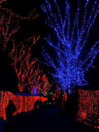 Zoo Lights Pictures by Oregon Zoo Lights Archives Lil Bit