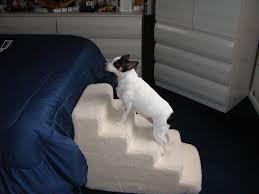 amazon com pet stairs petstairz 5 step high density foam pet