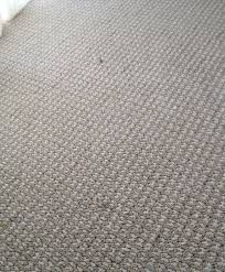 advice stainmaster petprotect carpet vinyl bedroom install