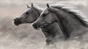 mustang horse drawing mustang horse wallpapers wallpaper studio 10 tens of thousands