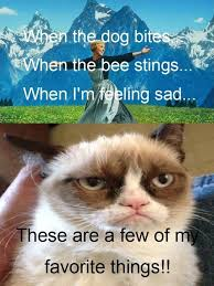 Feeling Sad Meme - top 23 most funniest grumpy cat quotes for different ocassion