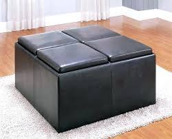 Ikea Storage Ottoman Bench Bench Cushions Ikea Home Decor Best Designs Storage Ottoman Pads