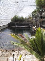 biosphère 2 recherches biodivercity pinterest