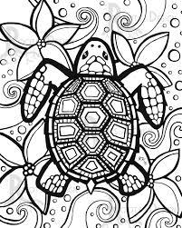 sea turtle coloring diaet