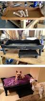 Dog Bunk Beds Furniture by 143 Best K9 Images On Pinterest Animals Dog Stuff And Dog