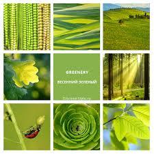 pantone spring summer 2017 modnie cveta 2017 goda zeleniy greenery pantone spring summer 2017