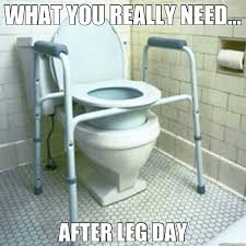 Meme Toilet - 25 hilarious after leg day meme sayingimages com