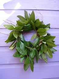 bay leaf wreath time to harvest a carolina bay wreath welcome to the archive of