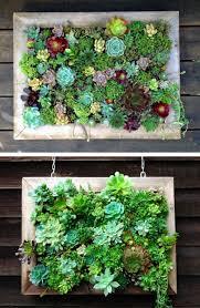 vertical garden design ideas photos of vertical gardens browse