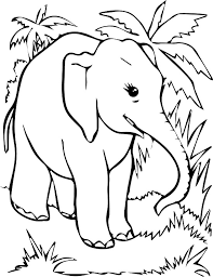 printable elephant coloring pages coloring