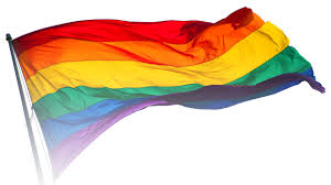 Polyamory Flag Lgbt Sexuality U0026 Gender Identity Pride Flags