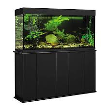 55 gallon aquarium light aquatic fundamentals 55 gallon upright aquarium stand petco