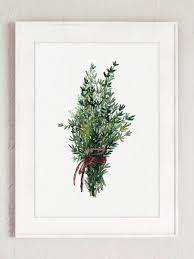Thyme Bundle Green Herb Kitchen Art Print Dining Room