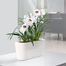 self watering indoor planters lechuza windowsill self watering indoor planter walmart com