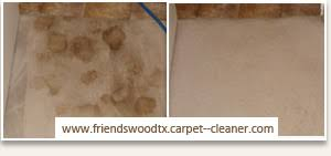 professional carpet cleaner house steam cleaning pearland texas