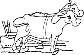 oxen cartoon with plow coloring page cartoon awesome pictures