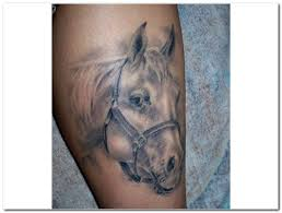 Horse Tattoo Ideas 33 Best Horse Tattoos Images On Pinterest Horse Tattoos Horses