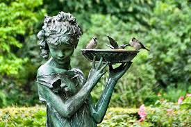 atracting birds to your garden u2013 carra lucia books