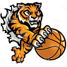 basketball clipart images kit de tigre agressif basketball cliparts vectoriels et plus d