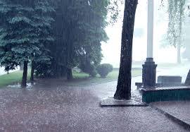 Mm Di Pioggia Pioggia Wikiquote
