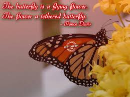 butterfly u2013 a flying flower
