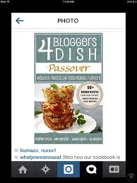 kosher chagne 97 best my favorite kosher food recipes images on