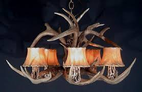 white tail deer antler chandeliers antlers by cody