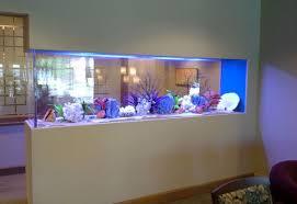 Home Aquarium Decorations The Killing Modern Top Of Aquariums Home Interior Trends