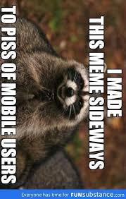 Evil Raccoon Meme - evil plotting raccoon meme funny pinterest raccoons meme and