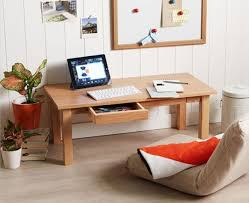 Pc Desk Ideas Best 20 Floor Desk Ideas On Pinterest Midcentury Cat Beds