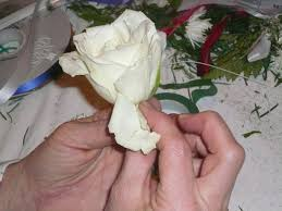 how to make boutonnieres how to make a boutonniere 9 steps with pictures wikihow