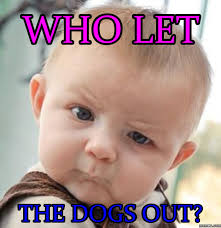 Who Let The Dogs Out Meme - home memes com