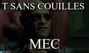 Morpheus Cat Meme - t sans couilles morpheus meme on memegen