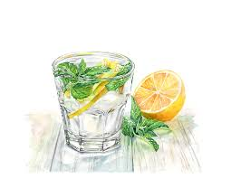 watercolor cocktail watercolor illustrations by kateryna savchenko available for