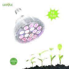 grow light bulbs lowes grow light bulbs lowes what is a plant light bulb best grow light