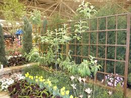 small space gardening u2013 my northern garden