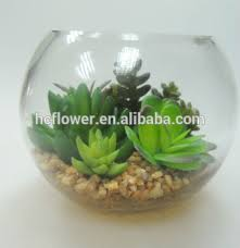 Home Decorating Plants With Glass Bowl Artificial Plant For Home Decorating Buy With