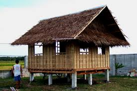 Native House Design Simple Design Of Native Modern House With Heat Lamp Inside Chicken