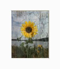 rustic sunflower decor country rustic home decor theme
